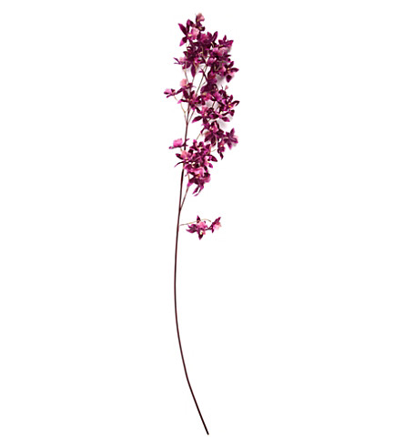 SIA HOME FASHION Orchid oncidium stem 118cm