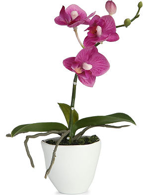 SIA HOME FASHION Phalaenopsis Orchid articial flower pot 20cm