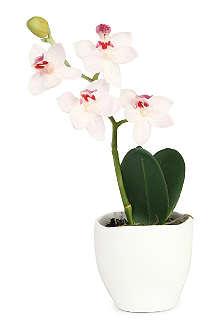 SIA HOME FASHION Phalaenopsis Orchid articial flower pot 20cm