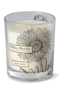 MILLER HARRIS Figue Amère scented candle