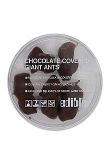 EDIBLE Dark chocolate covered ants 8g