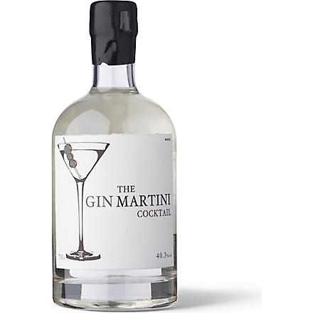 MASTER OF MALT The Gin Martini cocktail 700ml