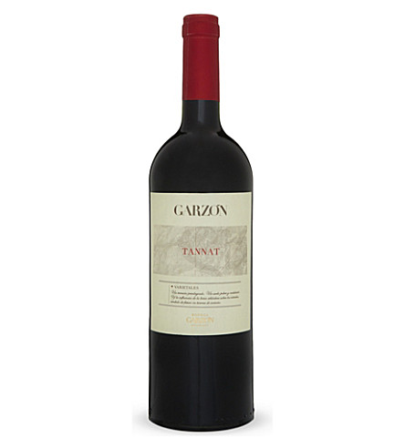 WORLD OTHER Bodega Garzón Tannat 2012 750ml