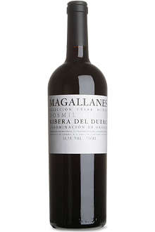 Magallanes 2006 red wine 750ml