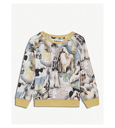 MOLO Elsa dog-print stretch-cotton T-shirt 3-24 months (Yellow
