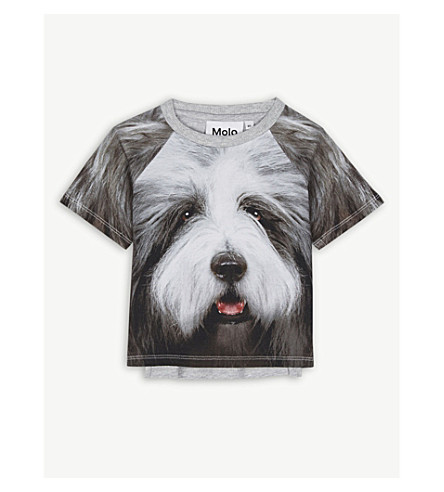 MOLO Even dog-print stretch-cotton T-shirt 3-24 months (Grey