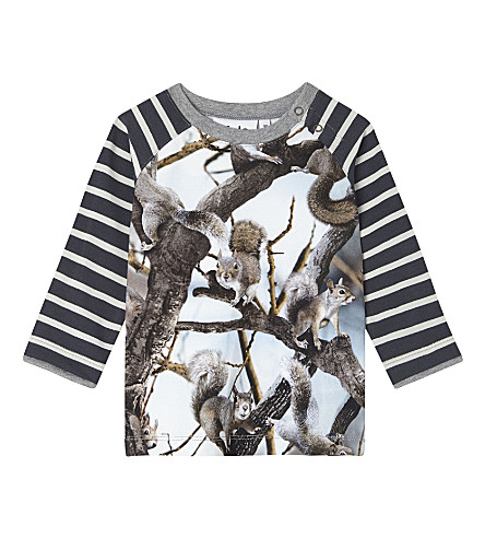 MOLO Squirrel cotton T-shirt 3-24 months (4619