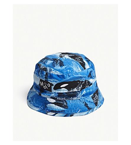 MOLO Orca Killer Whale print bucket hat (Blue