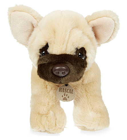 KEEL Rascal french bulldog puppy 35cm