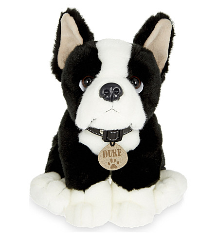 KEEL Duke Boston Terrier puppy 35cm