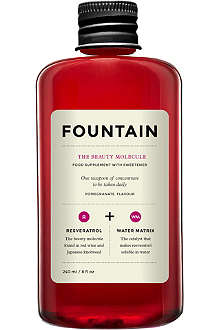 FOUNTAIN The Beauty Molecule 240ml