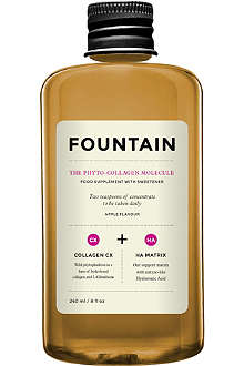 FOUNTAIN The Phytocollagen Molecule 240ml