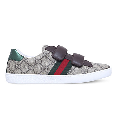 GUCCI New ace vl (Brown