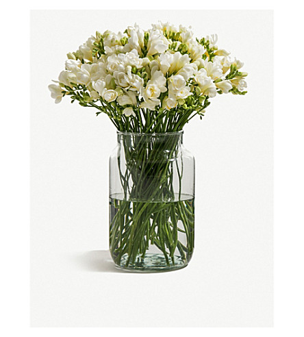 FLOWERBX FOR SELFRIDGES Freesias bunch of 50 (Baby+powder