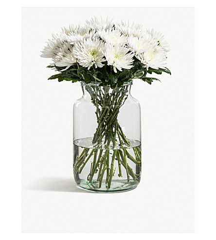 FLOWERBX FOR SELFRIDGES Chrysanthemums bunch of 50 (Snowy+white