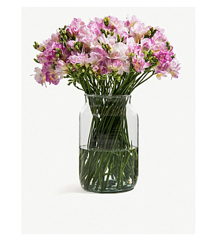FLOWERBX FOR SELFRIDGES Freesias bunch of 50 (Pink+kiss