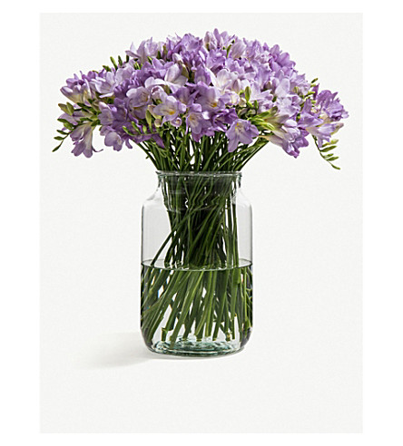 FLOWERBX FOR SELFRIDGES Freesias bunch of 50 (Grape+kiss