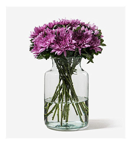 FLOWERBX FOR SELFRIDGES Chrysanthemums bunch of 50 (Crimson
