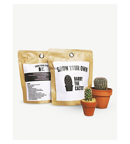BARRY THE CACTUS Grow Your Own Barry the Cactus kit