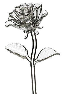WATERFORD Fleurology crystal rose