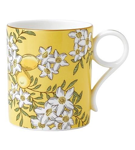 WEDGWOOD Lemon & ginger tea garden china mug