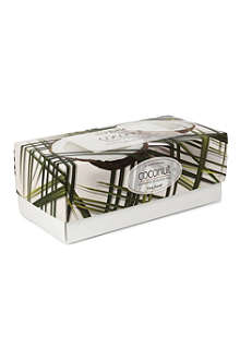 TEA FORTE Coconut tea ribbon box 60g