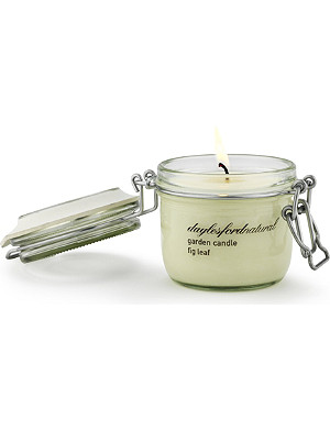DAYLESFORD Fig Leaf medium jar candle
