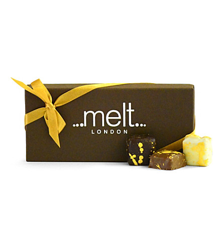 MELT Sea-salted milk chocolate box of 10