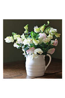 THE REAL FLOWER COMPANY Cream & Pink Sweetpea jug