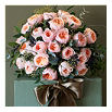 THE REAL FLOWER COMPANY David Austin 24 Juliet rose bouquet