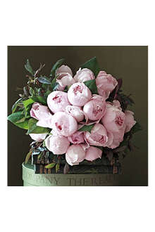 THE REAL FLOWER COMPANY English roses blush pink