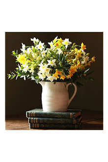 THE REAL FLOWER COMPANY Scented English narcissi jug arrangement