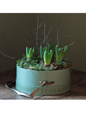 THE REAL FLOWER COMPANY Scented hyacinth hat box