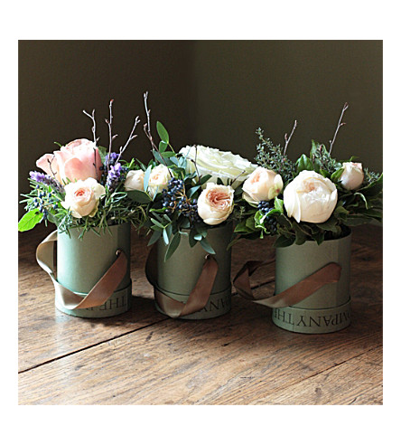 THE REAL FLOWER COMPANY Scented Woodland trio