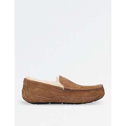 UGG Ascot slipper shoes (Brown