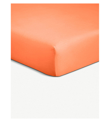 BOSS Alcove cotton-percale single fitted sheet (Orange