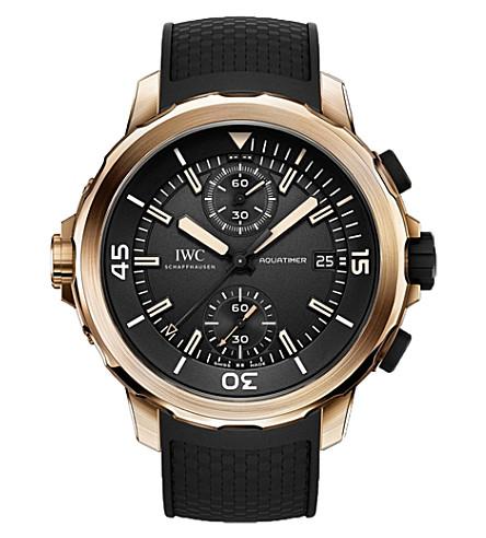 IWC沙夫豪森 Iw379503 版远征查尔斯达尔文的手表