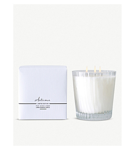 THE WHITE COMPANY Autumn large mineral wax candle (No+colour