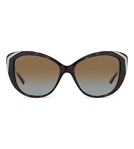 BVLGARI BV8144 square sunglasses (Dark+havana