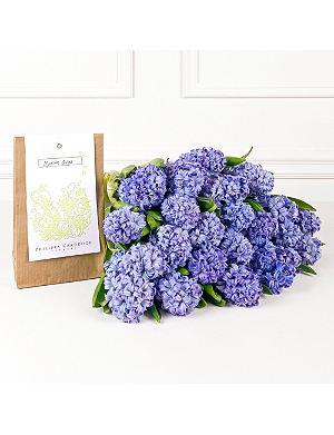 PHILIPPA CRADDOCK Powder Blue Hyacinths & bulb packet