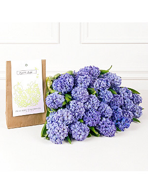 PHILIPPA CRADDOCK Powder Blue Hyacinths & bulb packet