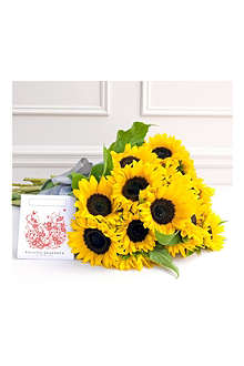 PHILIPPA CRADDOCK 15 Jolly sunflowers & seed packet