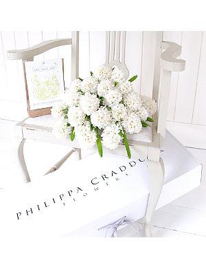 PHILIPPA CRADDOCK Pure White Hyacinth flowers & bulbs