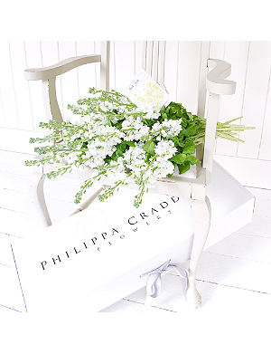 PHILIPPA CRADDOCK 25 pure white garden stocks & seeds