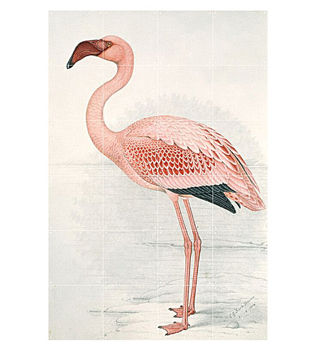 IXXI Flamingo wall print small