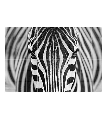 IXXI Zebra wall decoration large