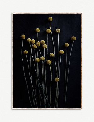 PAPER COLLECTIVE Pia Winther Still Life 01 Yellow Drumsticks print 50 x 70cm