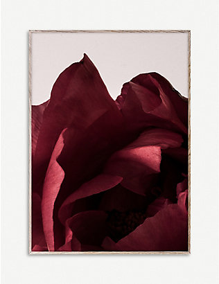 PAPER COLLECTIVE: Norm Architects Peonia 03 print 50 x 70cm