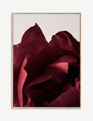 PAPER COLLECTIVE Norm Architects Peonia 03 print 50 x 70cm