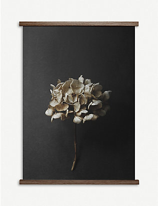 PAPER COLLECTIVE: Paper Collective x Pia Winther - Still Life 04 (Hydrangea) print – 50x70cm